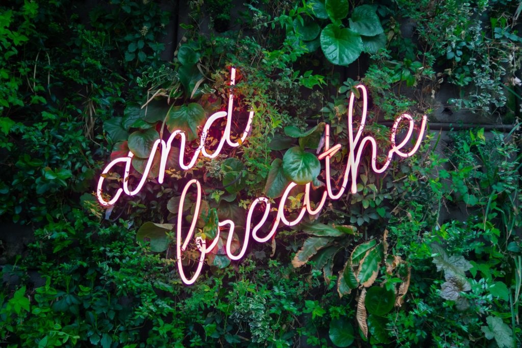 and breathe pink neon sign on plant backdrop